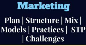 marketing management, marketing and technology, digital strategy, digital innovation, digital marketing techniques, global marketing, domestic marketing, international marketing