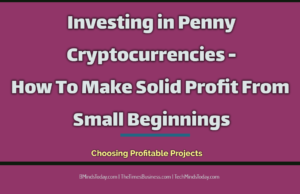 finance Finance & Investing Investing in Penny Cryptocurrencies How To Make Solid Profit From Small Beginnings 300x194