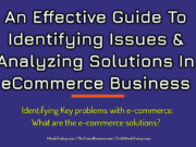 An Effective Guide To Identifying Issues & Analyzing Solutions In eCommerce Business